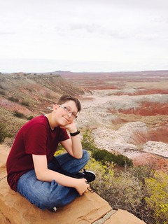 painted desert Petrified Forest kids view