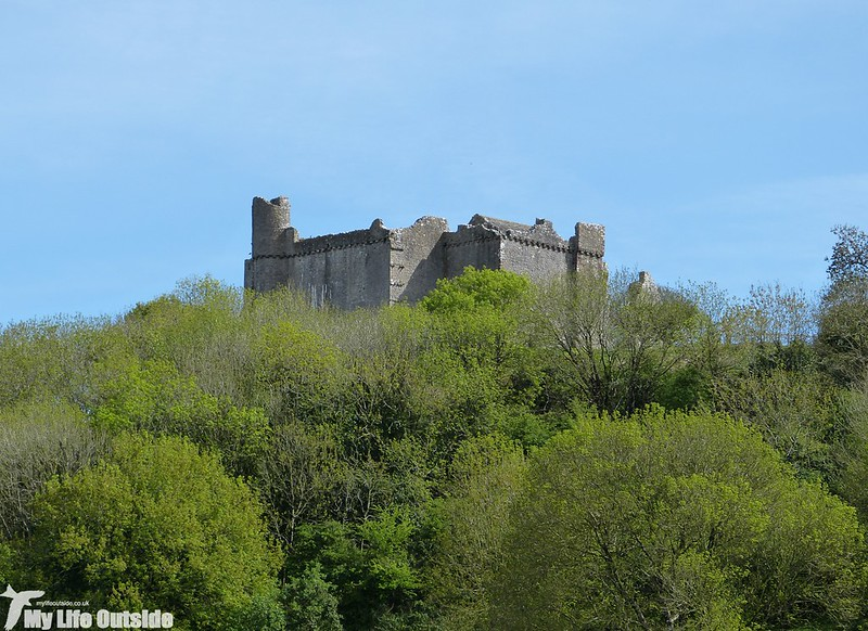 P1120721 - Weobley Castle