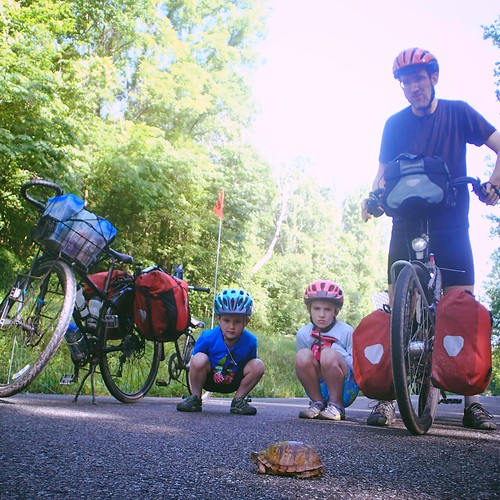 Saving turtles on a family cargo bike tour