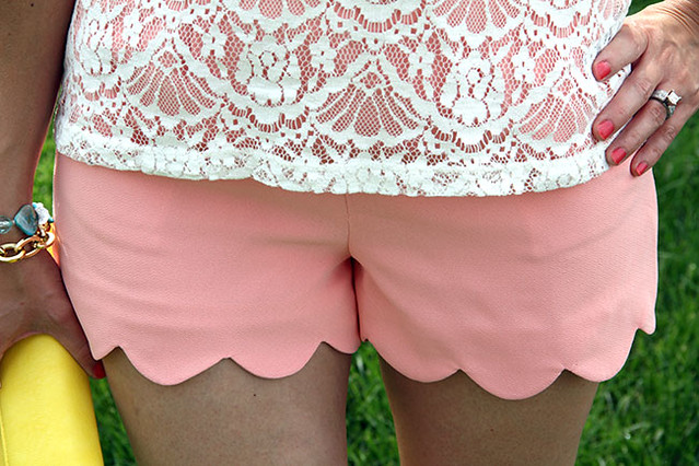 Close-up-of-scallop-shorts