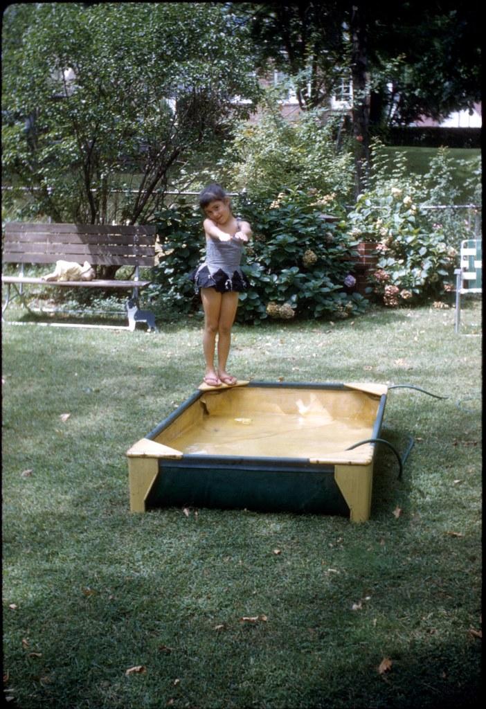 Backyard Pool With Open Living Room