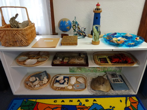 Ocean Unit Study Shelf (Photo from Inspired Montessori and Arts at Dundee Montessori)