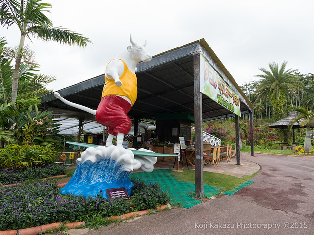 東南植物楽園-48