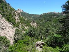 Le vallon du Carciara descendant de Paliri