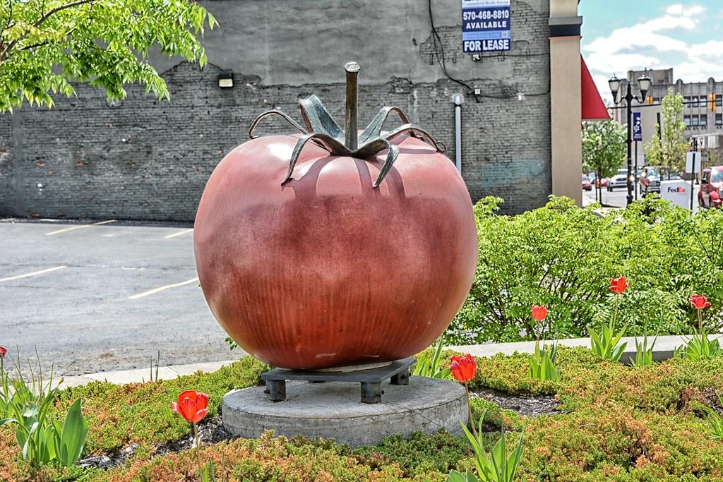Tomato Capital of the World Statue