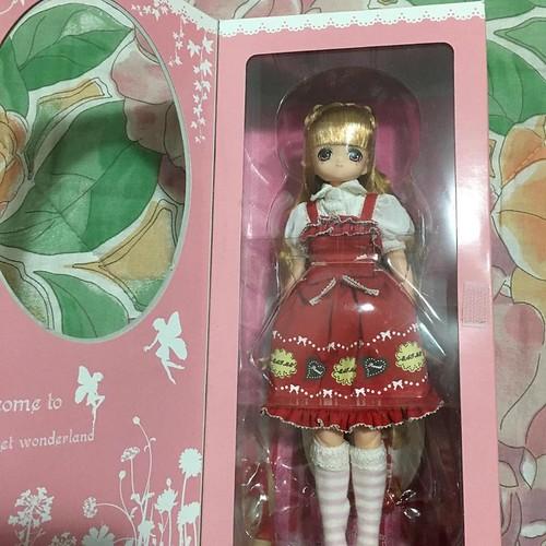 Vendre divers poupées Azone - Volks↓ 26848975905_641b825867