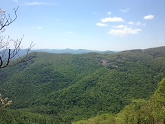 View from Granite Outcropping Along Whitley Gap Trail