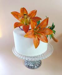 לילי מדורה על עוגה