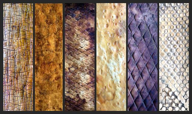 MycoWorks 正在研發各種質感的真菌皮革。MycoWorks研發的真菌皮革看起來就像牛皮一樣。(圖片來源:MycoWorks提供。授權方式:media use)