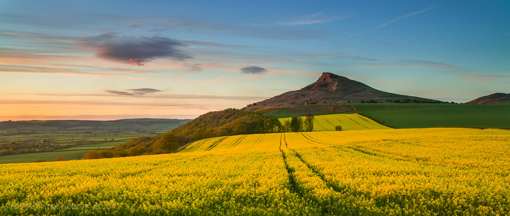 Late Spring Roseberry Topping After A Disappointing