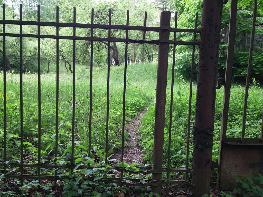 Išlaužtas tvoros strypas ir takelis.