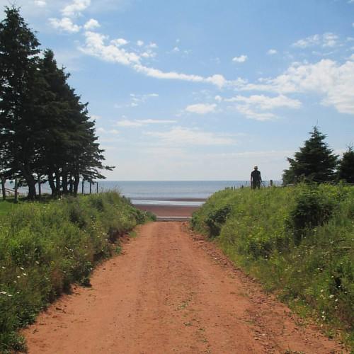 Road down to the beach #pei #victoria #victoriabythesea #road #beach #red #latergram