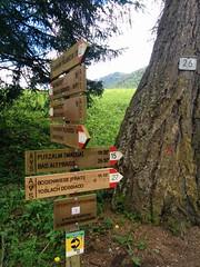 Wegmarkierung Nr. 15 von Niederdorf zur Putzalm
