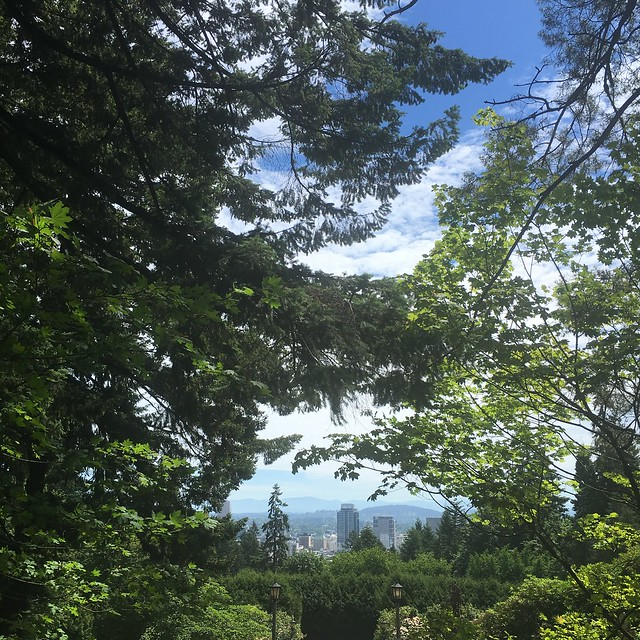 View of downtown from International Rose Test Gardens, Portland, Oregon