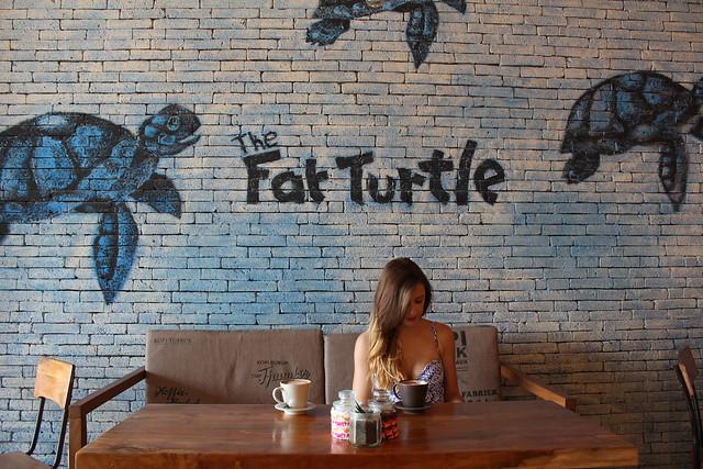 Fat turtle Bali