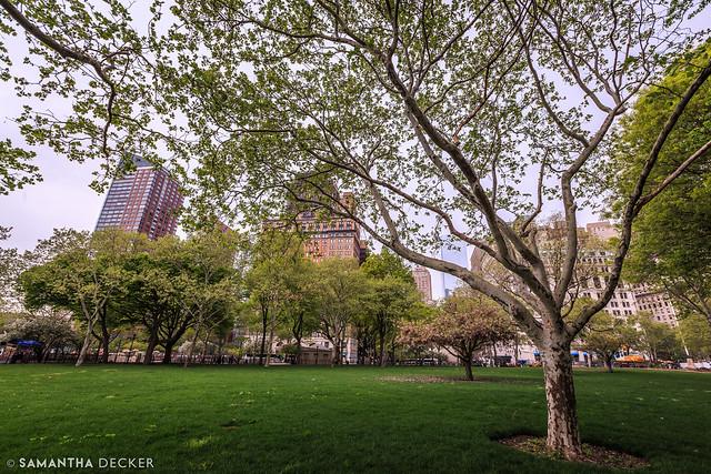 Battery Park in Spring