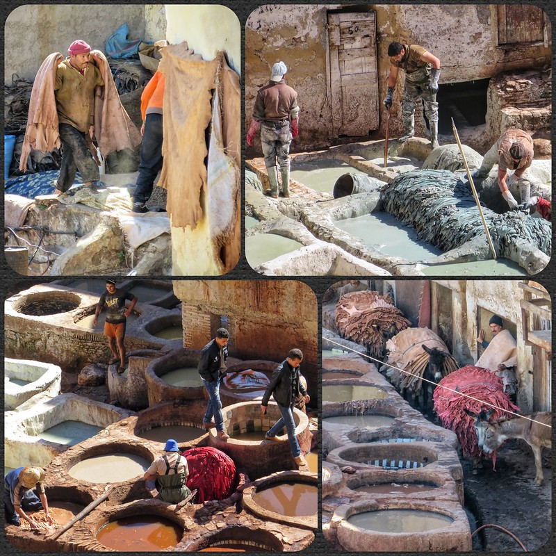 Montage of Fez tanneries