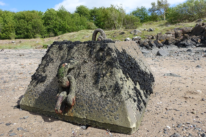 Cramond Island, 25 May 2015 094