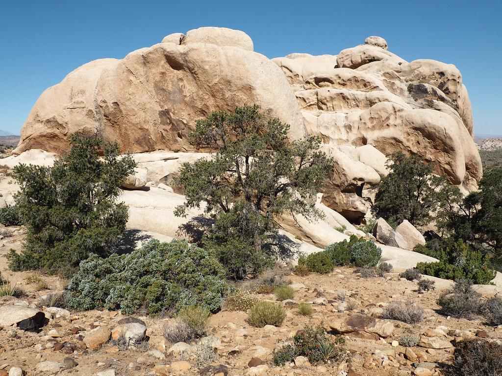 San Bernardino National Wildlife Refuge - Wikipedia