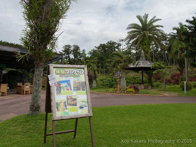東南植物楽園-29