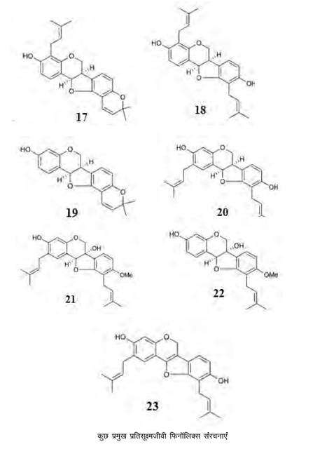कुछ प्रमुख प्रतिसूक्ष्मजीवी फिनॉलिक्स संरचनाएं