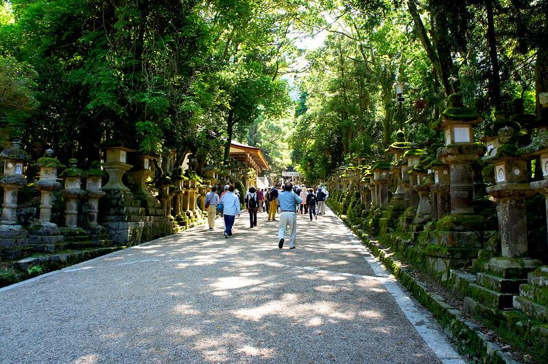 本殿へ向かう表参道/春日大社(Kasuga-Taisha Shrine / Nara City) 2015/05/21