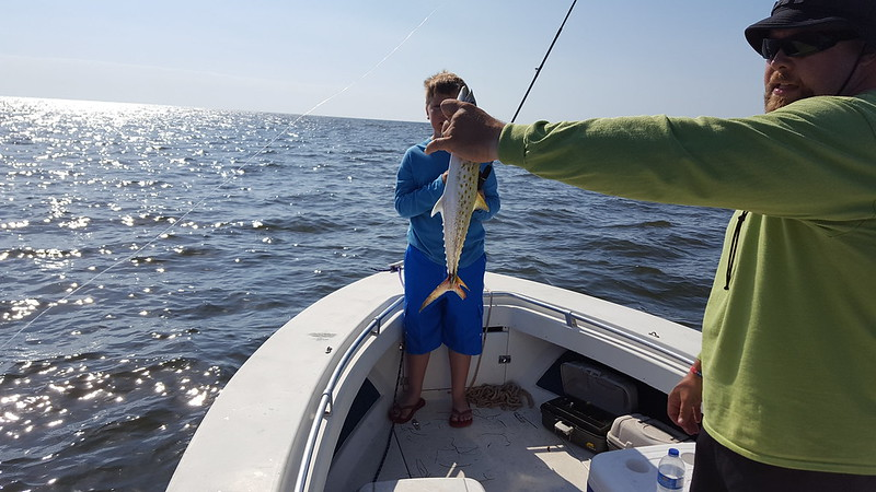 Bigbendfishing net view topic fishing report for live for Oak island fishing report