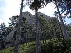 Au col intermédiaire entre pointe 1089 et Punta Mozza
