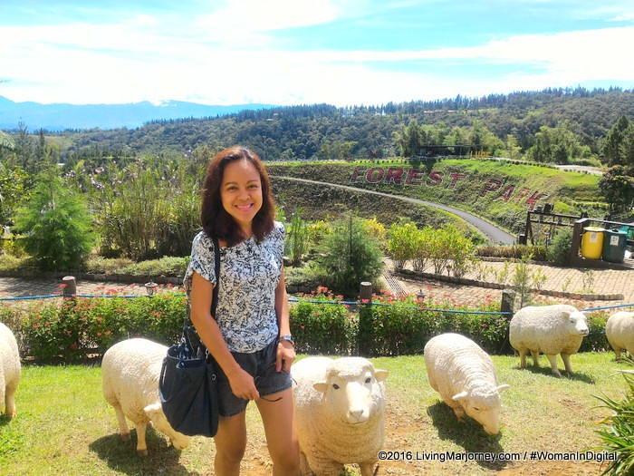 Forest Park Bukidnon