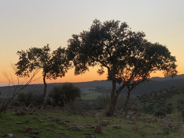 Atardecer en la Sierra de Andújar (Jaén)