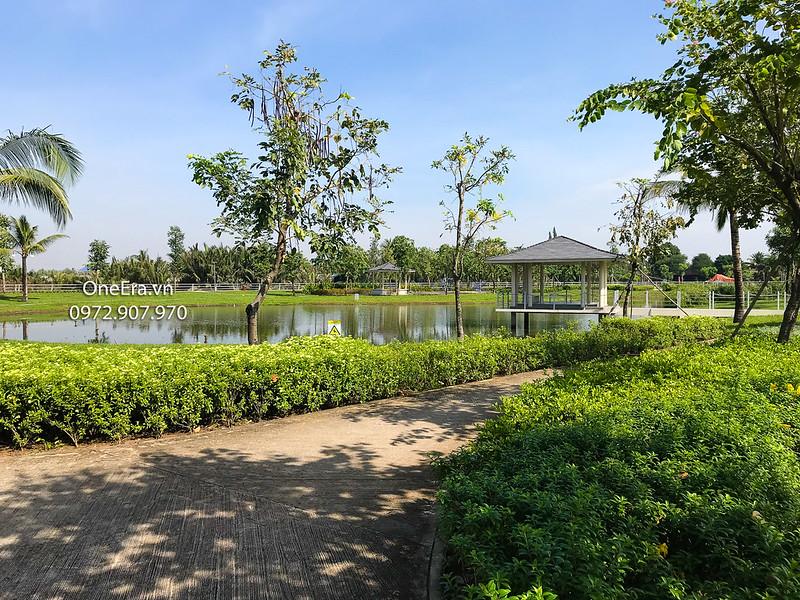 Nhiều cây xanh đem lại không gian thoáng mát