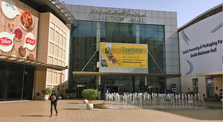 вход на выставку, World Trade Center Dubai