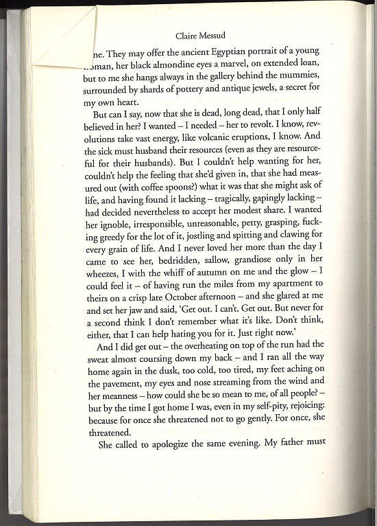 Claire Messud The Woman Upstairs p 60