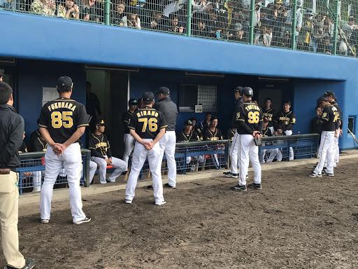 阪神虎隊在23日熱身賽3比8輸球,賽後總教練矢野燿大集合大家訓話。(鄭仲嵐攝)