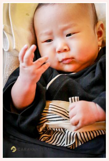 自分の手をじっと見つめる赤ちゃん お食い初めの出張撮影