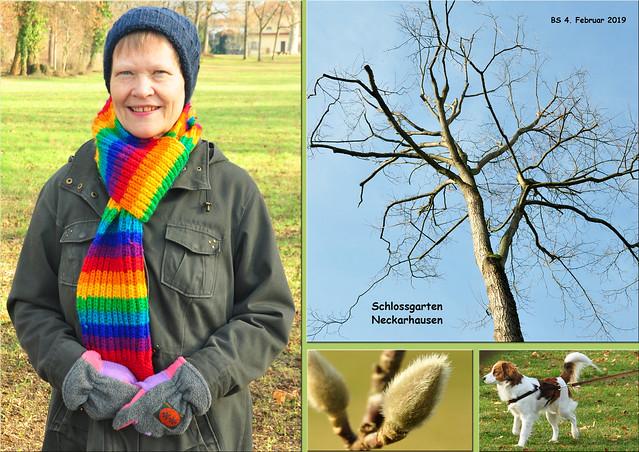 4. Februar 2019_Blauer Himmel, Sonne, 2 Grad_Im Schlossgarten Neckarhausen knospt die Magnolie ... Fotos: Brigitte Stolle