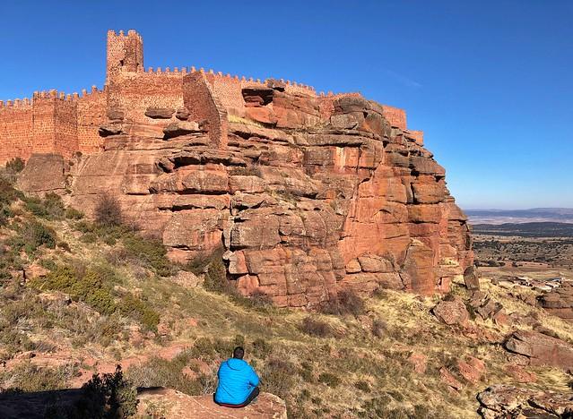 Sele en el castillo de Peracense (Tierras del Jiloca y Gallocanta, Aragón)