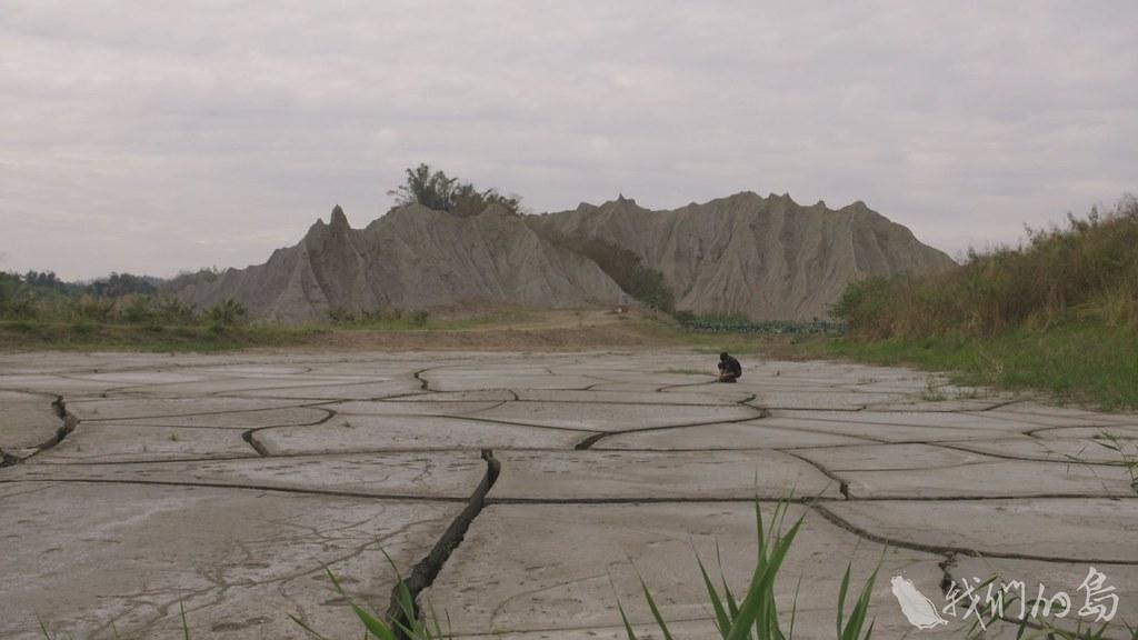 白堊土地形一向被認為草木不生、生態貧瘠,實際上並非如此。