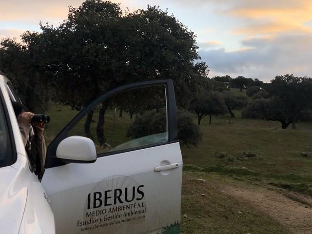 Iberus Medio Ambiente (Sierra de Andújar, Jaén)