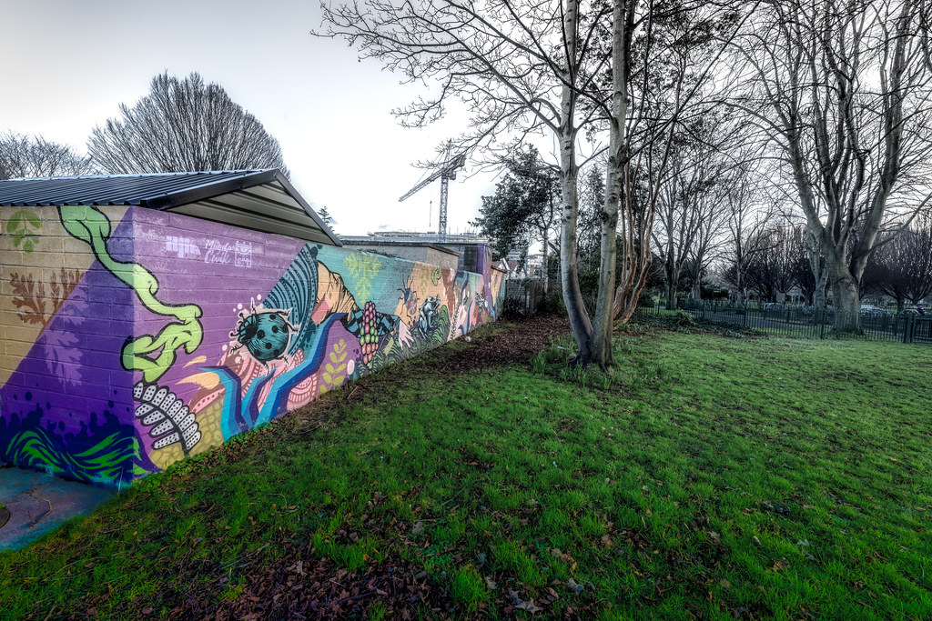 EXAMPLE OF STREET ART NEAR THE TEAROOMS IN HERBERT PARK 003