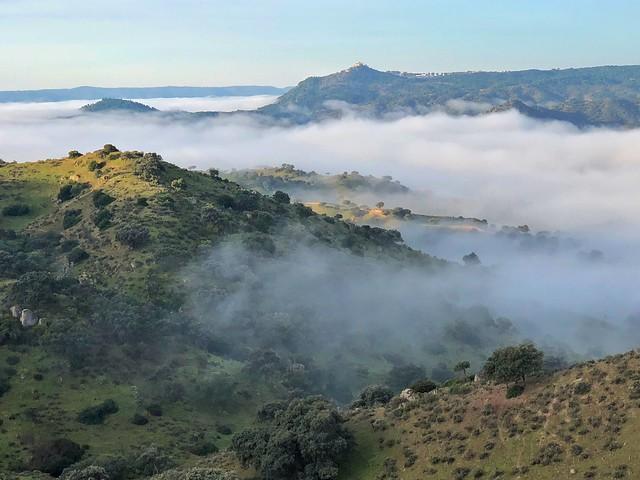 Sierra de Andújar (Dónde ver al lince ibérico)