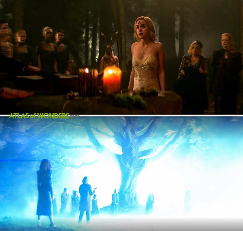 enchanted hanging tree scene