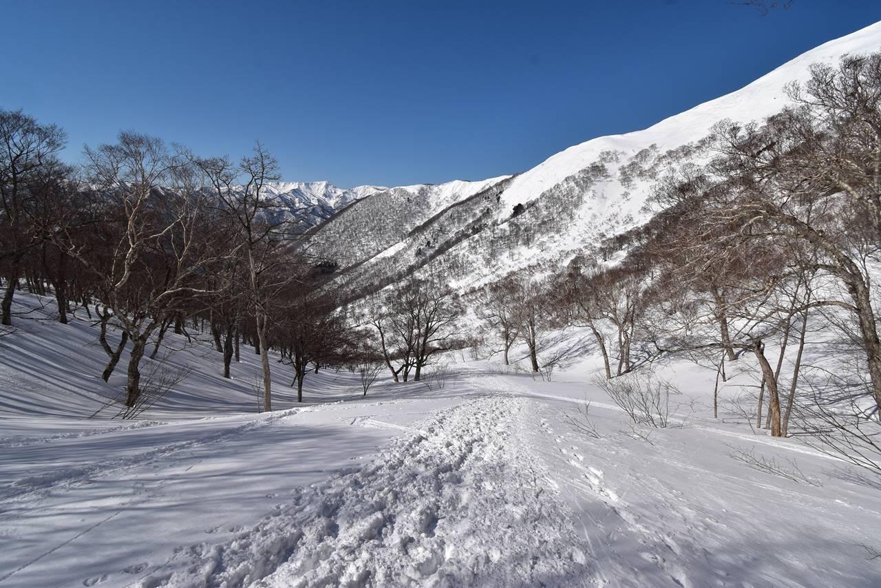 平標山・ヤカイ沢ルートで下山