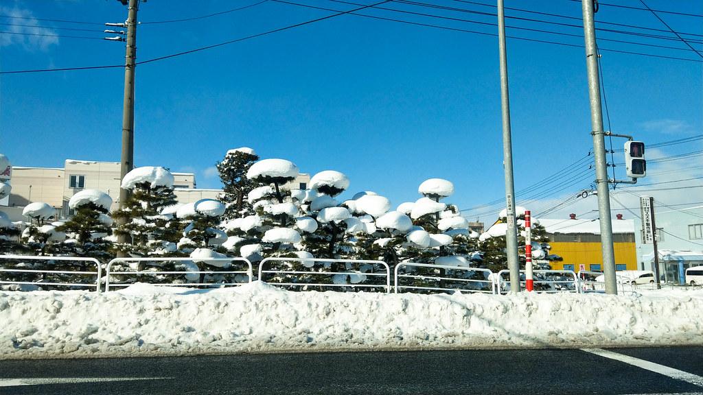 По Японии на машине: Сироиси-Лисья ферма Дзао-Ямадера-Гиндзан Онсен-Мацумото-Такаяма-Сиракаваго-Канадзава-Гудзё-Киото-Фудзи. Конец декабря-январь 2019