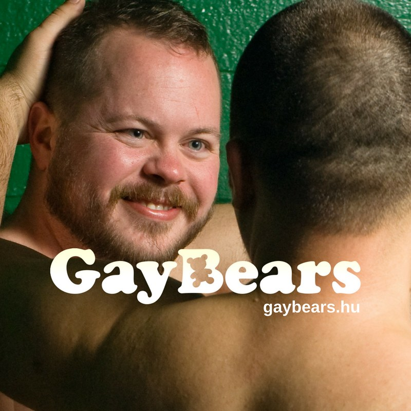 Mr. Bear Hungary 2013