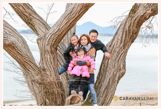 family photo on the tree at the lakeside Lake Biwa, Japan