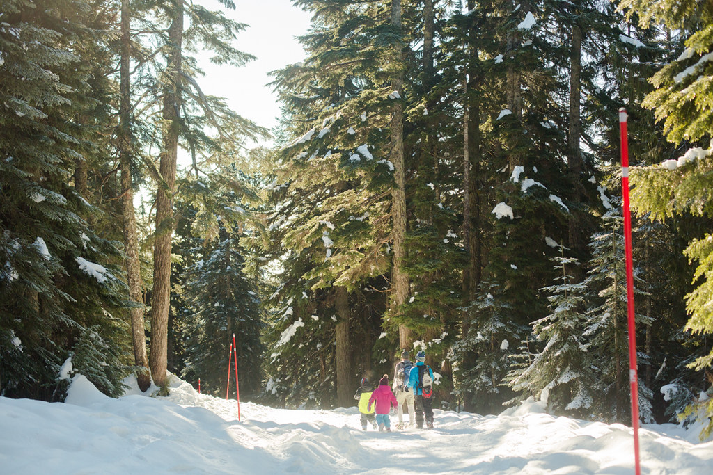 Snowshoeing Hollyburn Mountain at Cypress Mountain