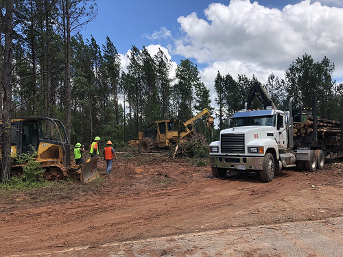 Timber and logging equipment