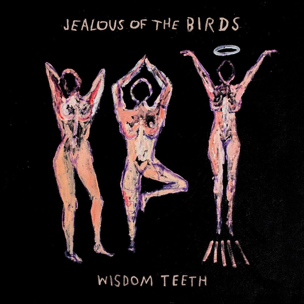 jealous of the birds wisdom teeth cover