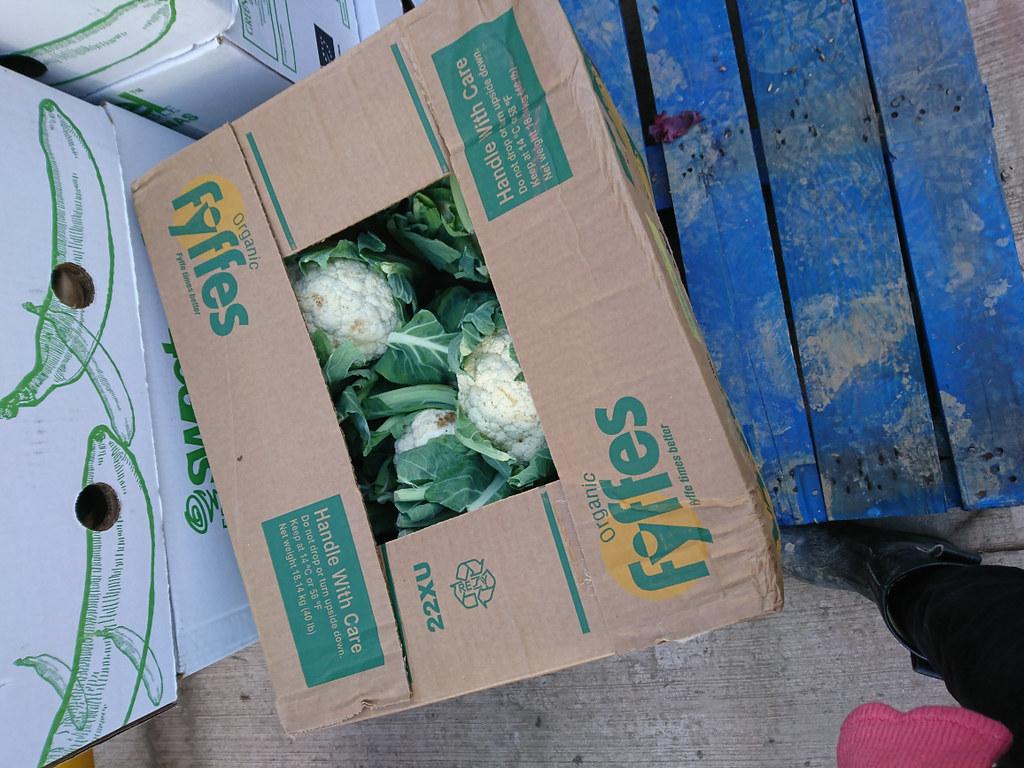 捐出的洋蔥和椰菜花。